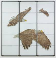 eagles on glass