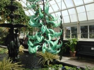 turq orchids