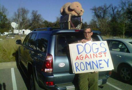 Romney-dog-roof